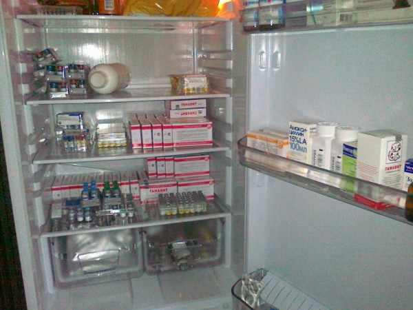 Вакцины в холодильнике